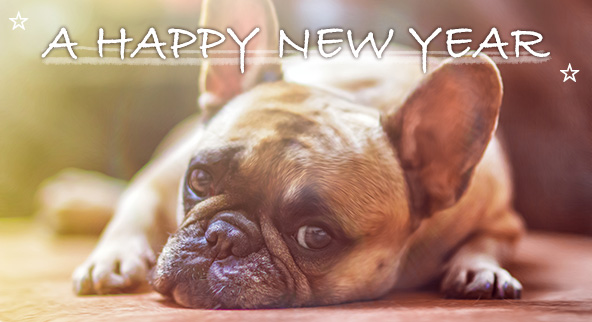 ☆新年のご挨拶☆